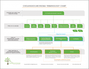 Cholangiocarcinoma Terminology Chart