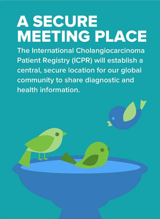 Patient-Registry-Infographic-split_04