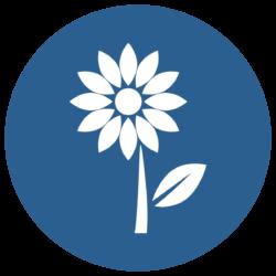 noun_Flower_3051143